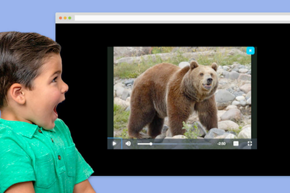 Watch & Learn Library - youngboy watching a bear on screen
